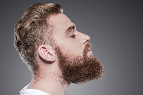 beard grooming how to shave maintain a nice beard hush. Black Bedroom Furniture Sets. Home Design Ideas